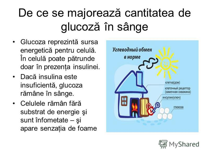 De ce se majorează cantitatea de glucoză în sânge Glucoza reprezintă sursa energetică pentru celulă. În celulă poate pătrunde doar în prezenţa insulinei. Dacă insulina este insuficientă, glucoza rămâne în sânge. Celulele rămân fără substrat de energi
