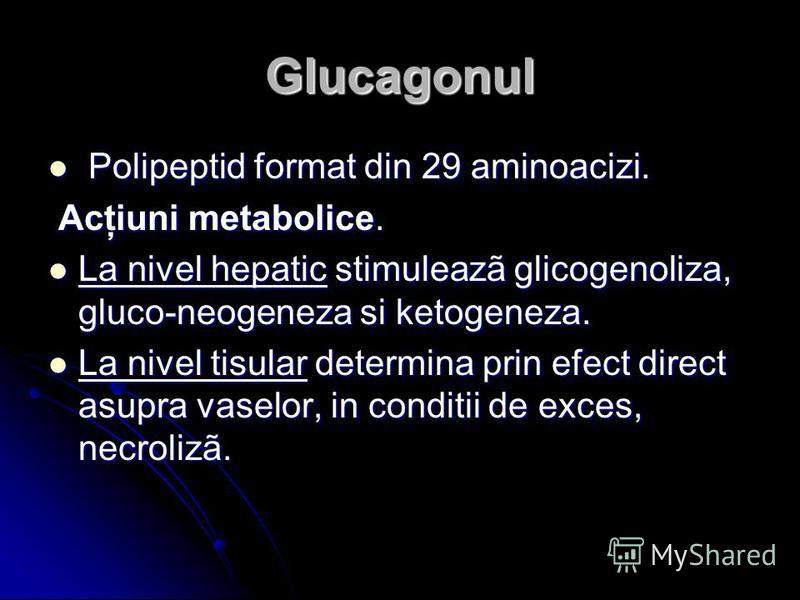 Glucagonul Polipeptid format din 29 aminoacizi. Polipeptid format din 29 aminoacizi. Acţiuni metabolice. Acţiuni metabolice. La nivel hepatic stimuleazã glicogenoliza, gluco-neogeneza si ketogeneza. La nivel hepatic stimuleazã glicogenoliza, gluco-ne