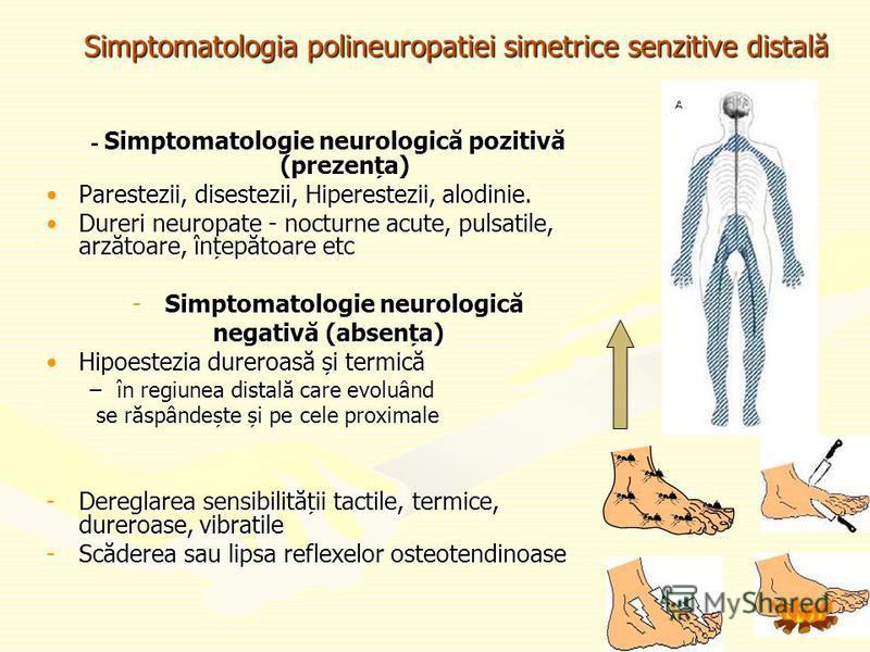 Simptomatologia polineuropatiei simetrice senzitive distală - Simptomatologie neurologică pozitivă (prezența) Parestezii, disestezii, Hiperestezii, alodinie.Parestezii, disestezii, Hiperestezii, alodinie. Dureri neuropate - nocturne acute, pulsatile,
