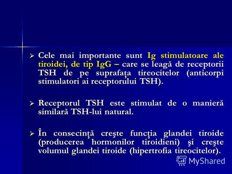 Cele mai importante sunt Ig stimulatoare ale tiroidei, de tip IgG – care se leagă de receptorii TSH de pe suprafaţa tireocitelor (anticorpi stimulatori ai receptorului TSH). Cele mai importante sunt Ig stimulatoare ale tiroidei, de tip IgG – care se