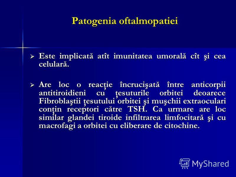 Patogenia oftalmopatiei Este implicată atît imunitatea umorală cît şi cea celulară. Este implicată atît imunitatea umorală cît şi cea celulară. Are loc o reacţie încrucişată între anticorpii antitiroidieni cu ţesuturile orbitei deoarece Fibroblaştii