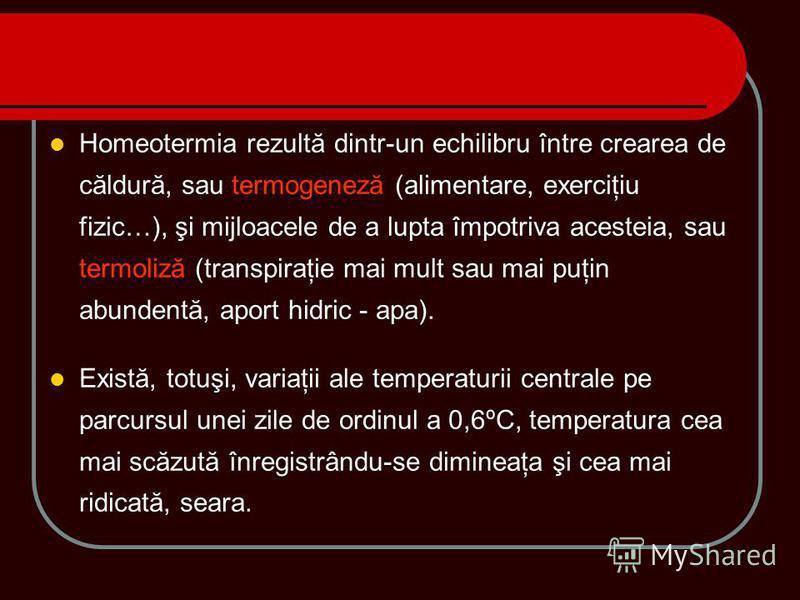 Homeotermia rezultă dintr-un echilibru între crearea de căldură, sau termogeneză (alimentare, exerciţiu fizic…), şi mijloacele de a lupta împotriva acesteia, sau termoliză (transpiraţie mai mult sau mai puţin abundentă, aport hidric - apa). Există, t