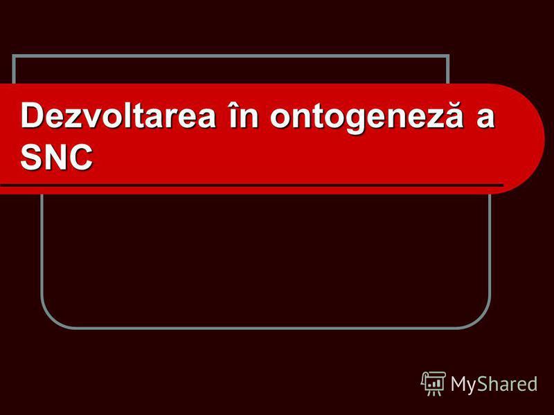 Dezvoltarea în ontogeneză a SNC