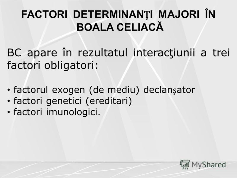 FACTORI DETERMINANI MAJORI ÎN BOALA CELIACĂ BC apare în rezultatul interacţiunii a trei factori obligatori: factorul exogen (de mediu) declanator factori genetici (ereditari) factori imunologici.