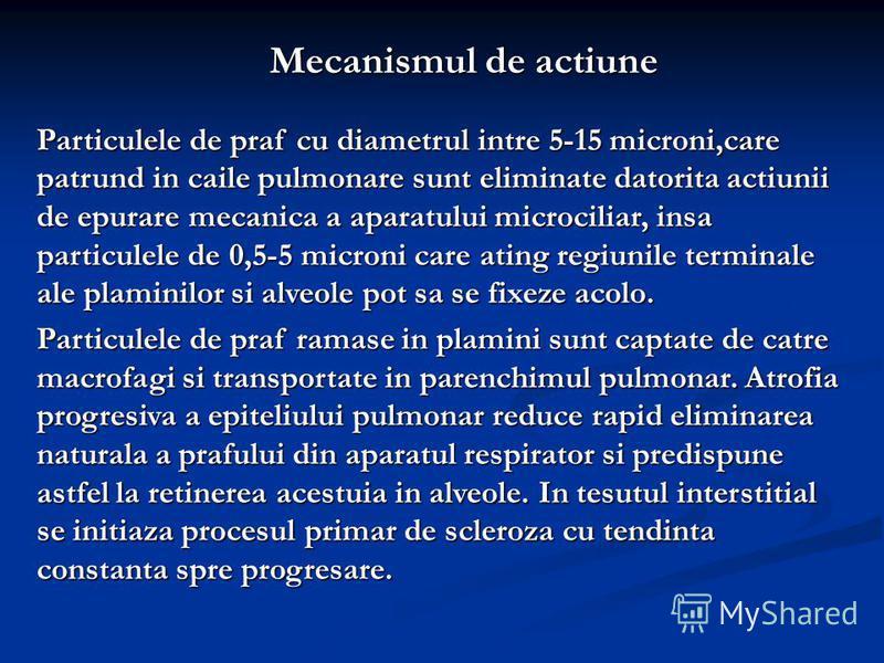 Mecanismul de actiune Particulele de praf cu diametrul intre 5-15 microni,care patrund in caile pulmonare sunt eliminate datorita actiunii de epurare mecanica a aparatului microciliar, insa particulele de 0,5-5 microni care ating regiunile terminale