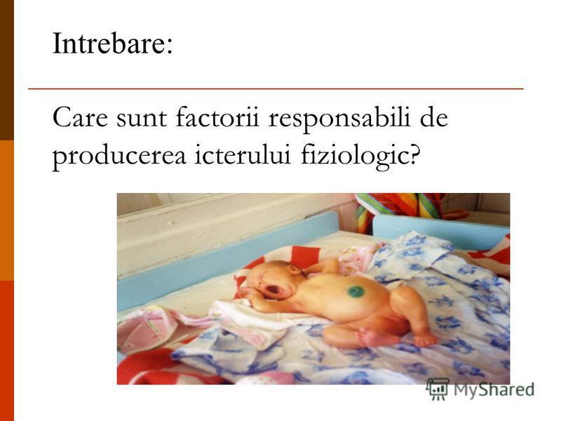 Intrebare: Care sunt factorii responsabili de producerea icterului fiziologic?