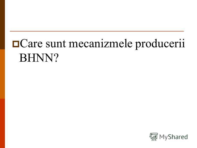 Care sunt mecanizmele producerii BHNN?