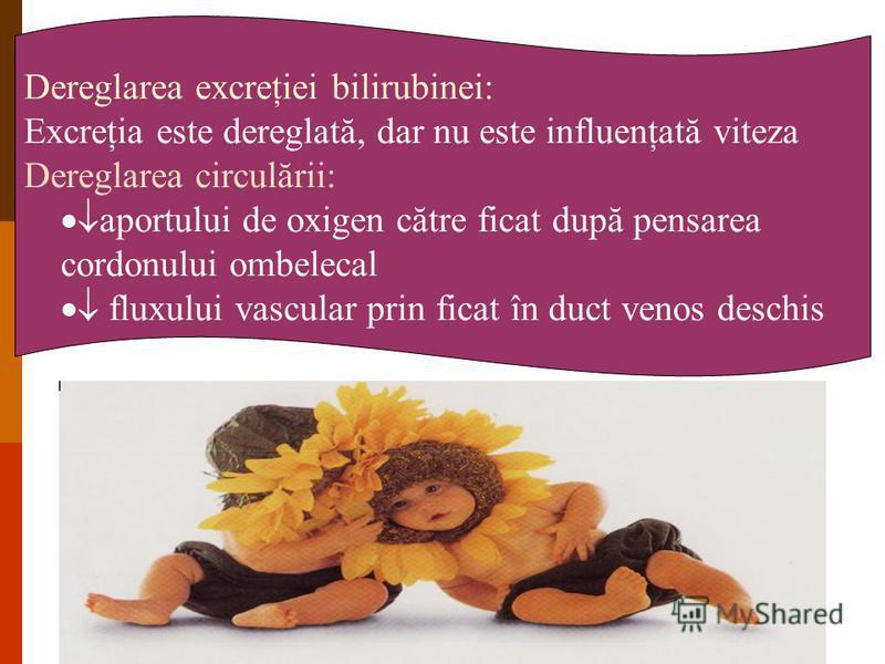 Dereglarea excreţiei bilirubinei: Excreţia este dereglată, dar nu este influenţată viteza Dereglarea circulării: aportului de oxigen către ficat după pensarea cordonului ombelecal fluxului vascular prin ficat în duct venos deschis