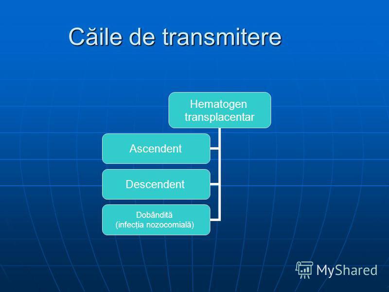 Căile de transmitere Hematogen transplacentar Ascendent Descendent Dobândită (infecţia nozocomială)