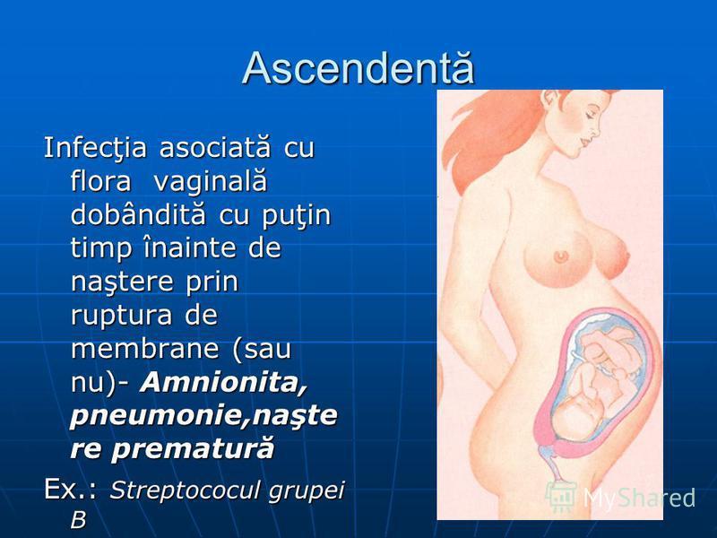 Ascendentă Infecţia asociată cu flora vaginală dobândită cu puţin timp înainte de naştere prin ruptura de membrane (sau nu)- Amnionita, pneumonie,naşte re prematură Ex.: Streptococul grupei B