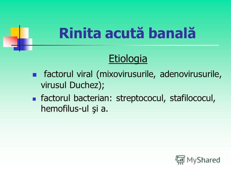 Rinita acută banală Etiologia factorul viral (mixovirusurile, adenovirusurile, virusul Duchez); factorul bacterian: streptococul, stafilococul, hemofilus-ul şi a.