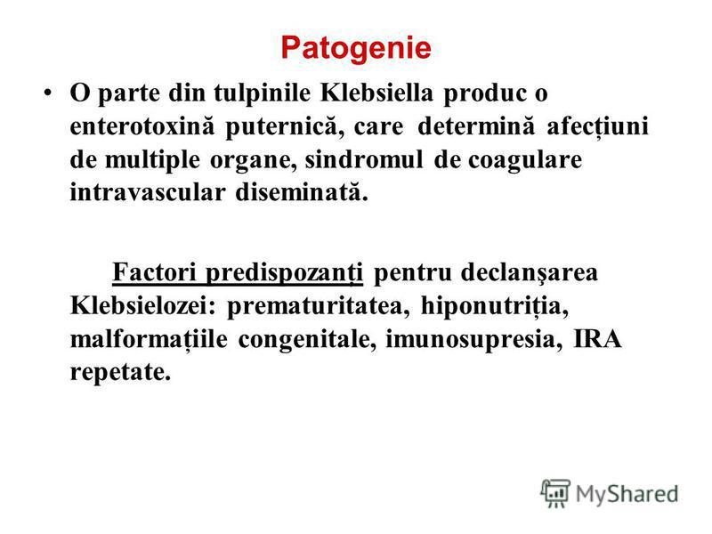 Patogenie O parte din tulpinile Klebsiella produc o enterotoxină puternică, care determină afecţiuni de multiple organe, sindromul de coagulare intravascular diseminată. Factori predispozanţi pentru declanşarea Klebsielozei: prematuritatea, hiponutri