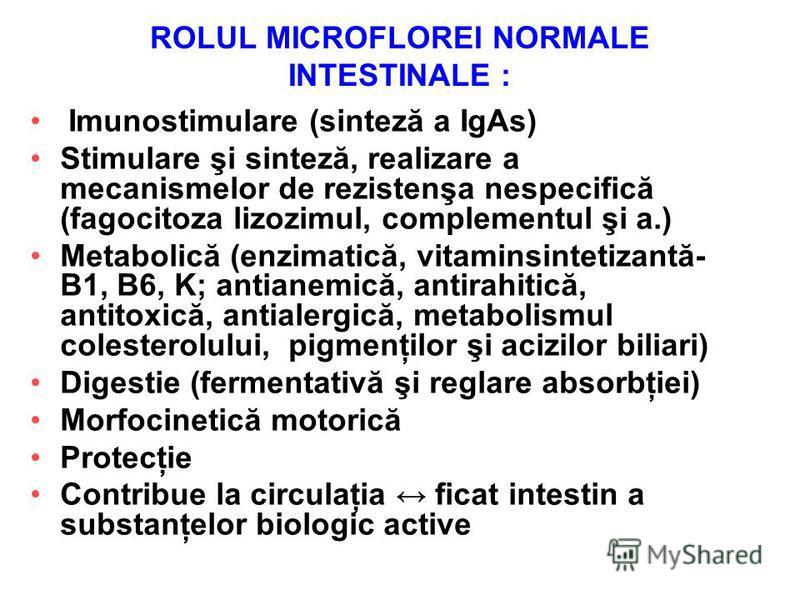 ROLUL MICROFLOREI NORMALE INTESTINALE : Imunostimulare (sinteză a IgAs) Stimulare şi sinteză, realizare a mecanismelor de rezistenşa nespecifică (fagocitoza lizozimul, complementul şi a.) Metabolică (enzimatică, vitaminsintetizantă- B1, B6, K; antian