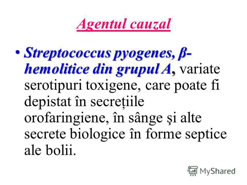 Agentul cauzal Streptococcus pyogenes, β- hemolitice din grupul A, Streptococcus pyogenes, β- hemolitice din grupul A, variate serotipuri toxigene, care poate fi depistat în secreţiile orofaringiene, în sânge şi alte secrete biologice în forme septic