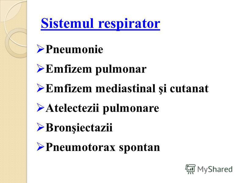 Sistemul respirator Pneumonie Emfizem pulmonar Emfizem mediastinal şi cutanat Atelectezii pulmonare Bronşiectazii Pneumotorax spontan