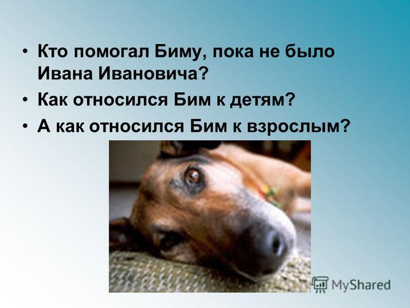 Кто помогал Биму, пока не было Ивана Ивановича? Как относился Бим к детям? А как относился Бим к взрослым?