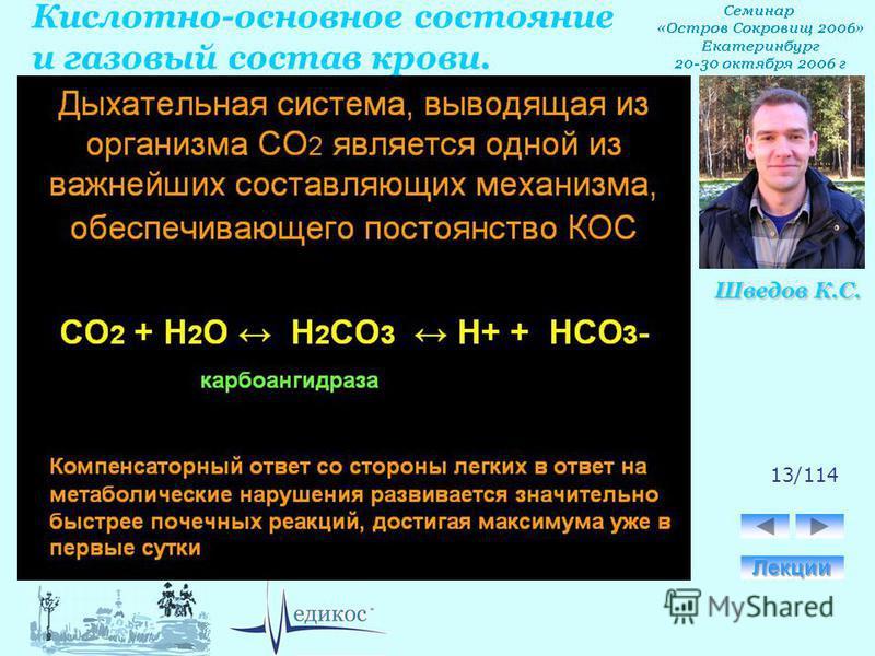 Кислотно-основное состояние и газовый состав крови. Шведов К.С. 13/114