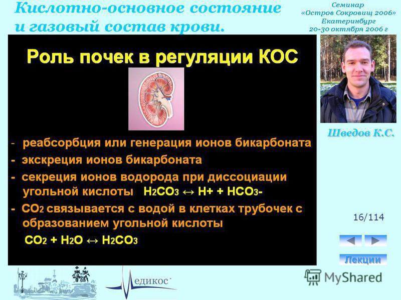 Кислотно-основное состояние и газовый состав крови. Шведов К.С. 16/114