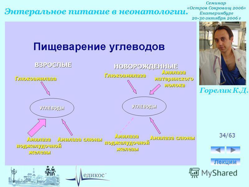 Горелик К.Д. Энтеральное питание в неонатологии. 34/63