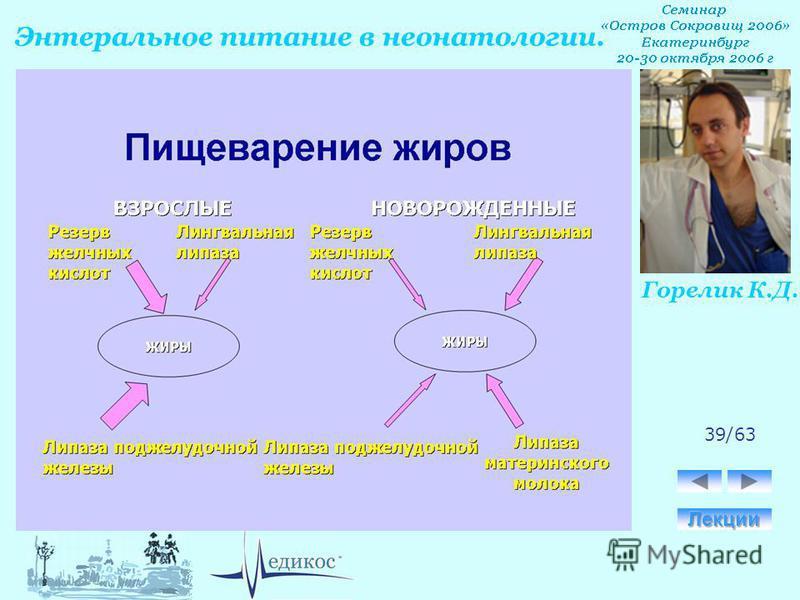 Горелик К.Д. Энтеральное питание в неонатологии. 39/63