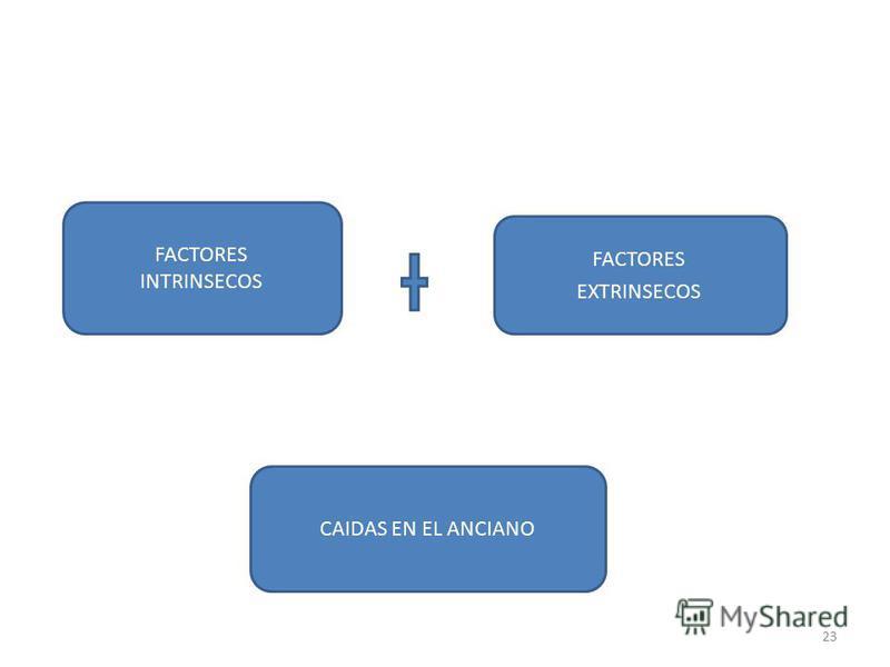 FACTORES INTRINSECOS FACTORES EXTRINSECOS CAIDAS EN EL ANCIANO 23