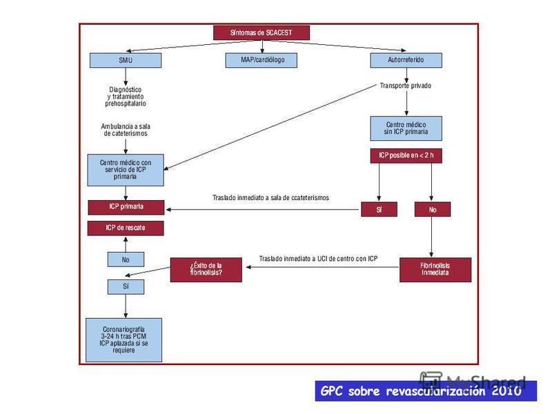 GPC sobre revascularización 2010