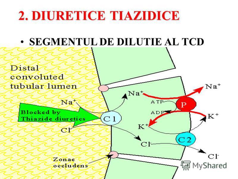 2. DIURETICE TIAZIDICE SEGMENTUL DE DILUTIE AL TCD