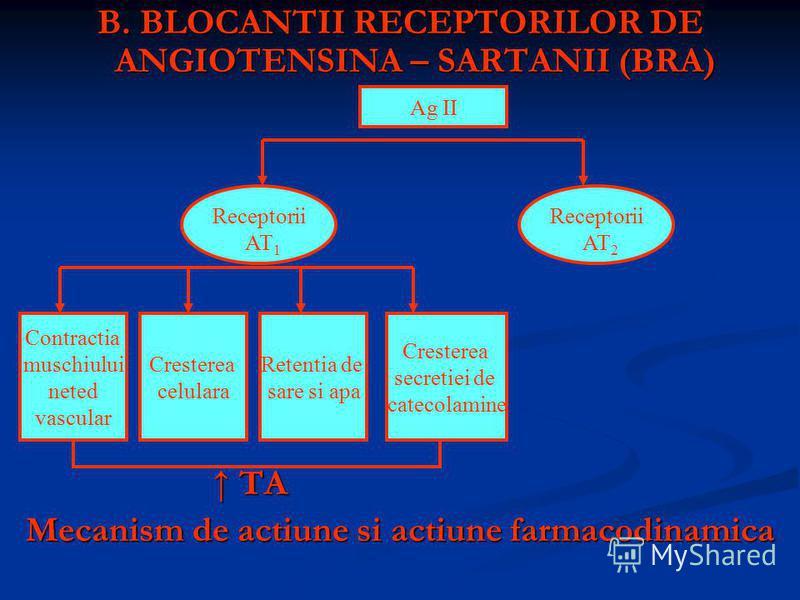 B. BLOCANTII RECEPTORILOR DE ANGIOTENSINA – SARTANII (BRA) TA TA Mecanism de actiune si actiune farmacodinamica Receptorii AT 1 Receptorii AT 2 Contractia muschiului neted vascular Cresterea celulara Retentia de sare si apa Cresterea secretiei de cat