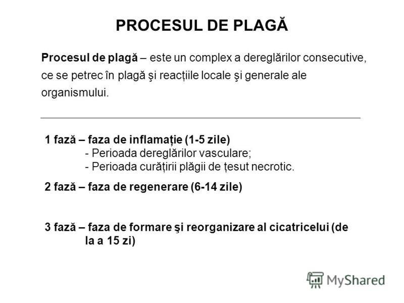PROCESUL DE PLAGĂ 1 fază – faza de inflamaţie (1-5 zile) - Perioada dereglărilor vasculare; - Perioada curăţirii plăgii de ţesut necrotic. 2 fază – faza de regenerare (6-14 zile) 3 fază – faza de formare şi reorganizare al cicatricelui (de la a 15 zi