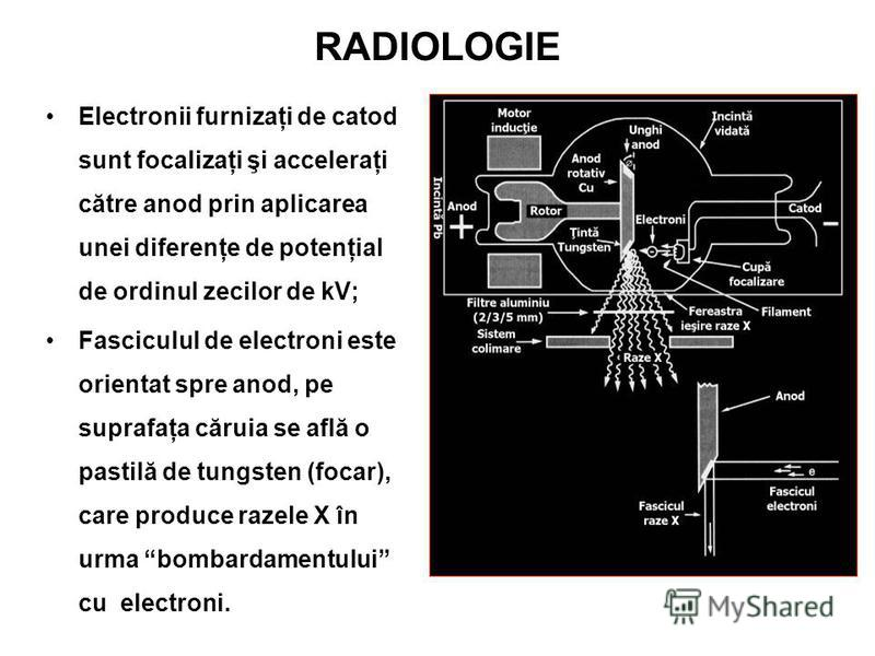RADIOLOGIE Electronii furnizaţi de catod sunt focalizaţi şi acceleraţi către anod prin aplicarea unei diferenţe de potenţial de ordinul zecilor de kV; Fasciculul de electroni este orientat spre anod, pe suprafaţa căruia se află o pastilă de tungsten