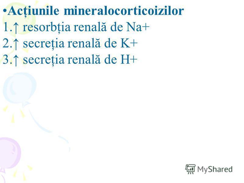 Acţiunile mineralocorticoizilor 1. resorbţia renală de Na+ 2. secreţia renală de K+ 3. secreţia renală de H+