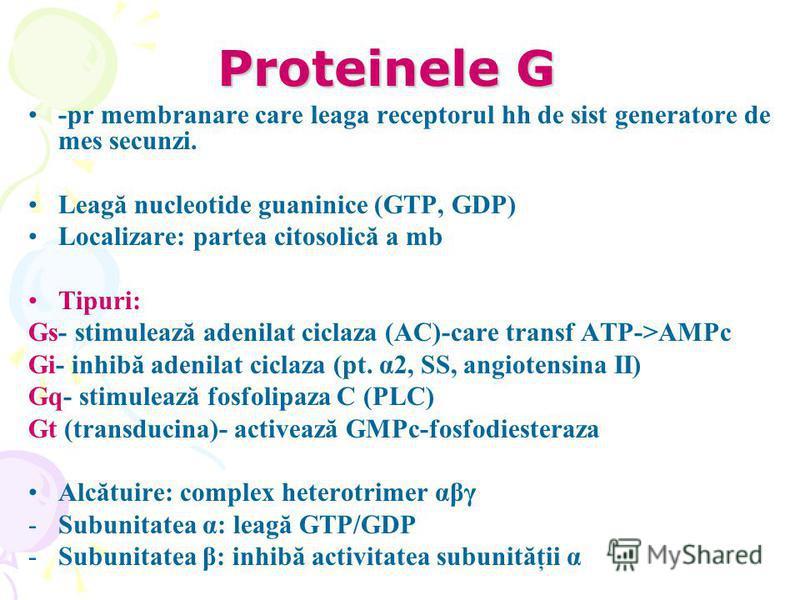 Proteinele G -pr membranare care leaga receptorul hh de sist generatore de mes secunzi. Leagă nucleotide guaninice (GTP, GDP) Localizare: partea citosolică a mb Tipuri: Gs- stimulează adenilat ciclaza (AC)-care transf ATP->AMPc Gi- inhibă adenilat ci