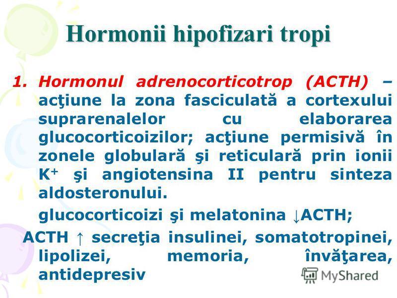 Hormonii hipofizari tropi 1.Hormonul adrenocorticotrop (ACTH) – acţiune la zona fasciculată a cortexului suprarenalelor cu elaborarea glucocorticoizilor; acţiune permisivă în zonele globulară şi reticulară prin ionii K + şi angiotensina II pentru sin