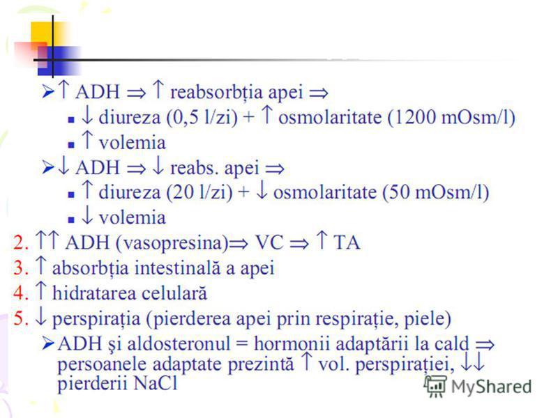 steroidogeneza