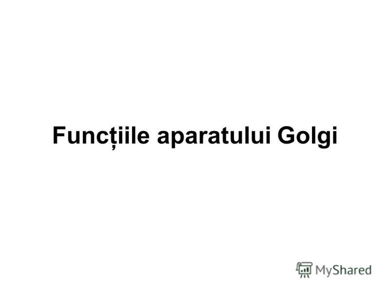 Funcţiile aparatului Golgi