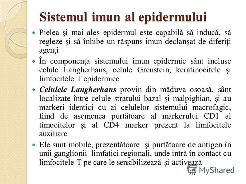 Sistemul imun al epidermului Pielea şi mai ales epidermul este capabilă să inducă, să regleze şi să înhibe un răspuns imun declanşat de diferiţi agenţi În componenţa sistemului imun epidermic sânt incluse celule Langherhans, celule Grenstein, keratin