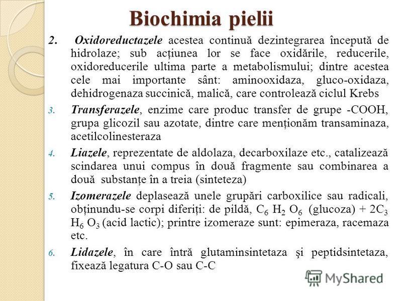 Biochimia pielii 2. Oxidoreductazele acestea continuă dezintegrarea începută de hidrolaze; sub acţiunea lor se face oxidările, reducerile, oxidoreducerile ultima parte a metabolismului; dintre acestea cele mai importante sânt: aminooxidaza, gluco-oxi