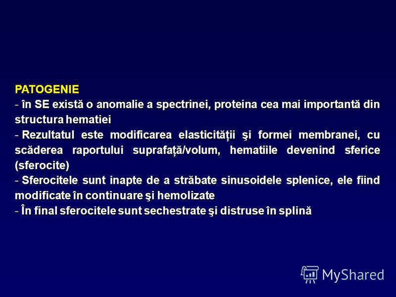 PATOGENIE - în SE există o anomalie a spectrinei, proteina cea mai importantă din structura hematiei - Rezultatul este modificarea elasticităţii şi formei membranei, cu scăderea raportului suprafaţă/volum, hematiile devenind sferice (sferocite) - Sfe