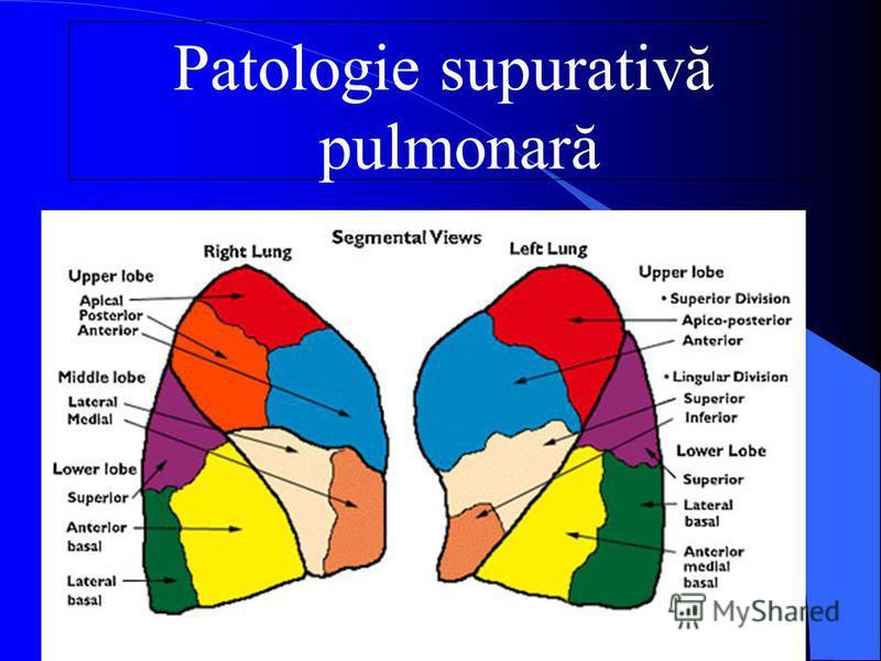 Patologie supurativă pulmonară