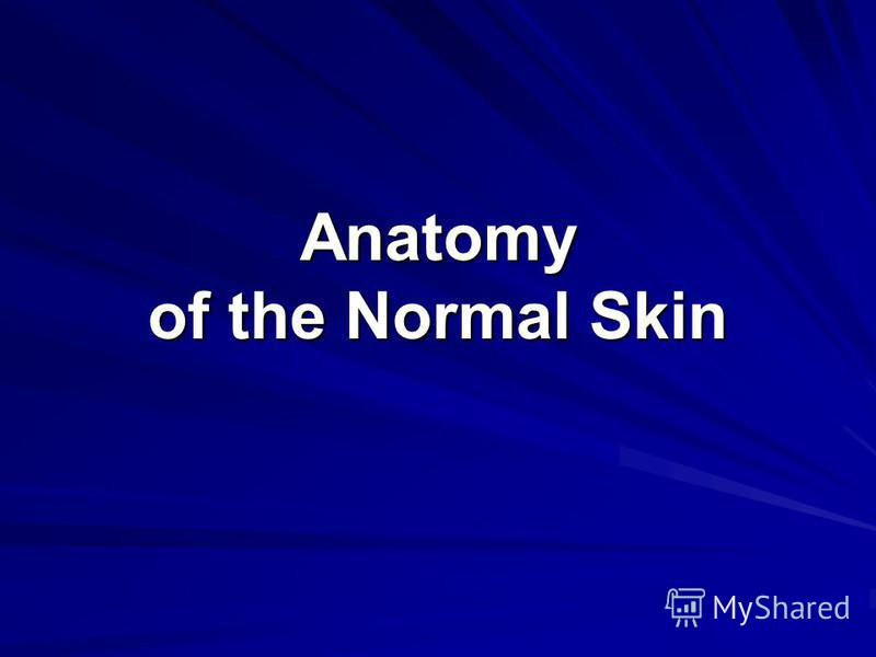 Anatomy of the Normal Skin