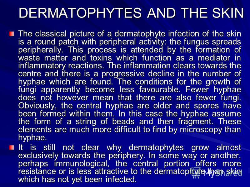 DERMATOPHYTES AND THE SKIN The classical picture of a dermatophyte infection of the skin is a round patch with peripheral activity: the fungus spreads peripherally. This process is attended by the formation of waste matter and toxins which function a