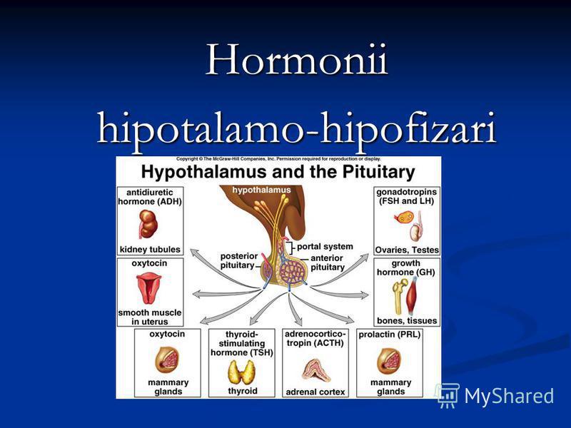 Hormoniihipotalamo-hipofizari
