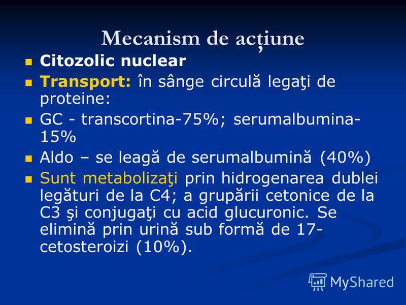 Mecanism de acţiune Citozolic nuclear Transport: în sânge circulă legaţi de proteine: GC - transcortina-75%; serumalbumina- 15% Aldo – se leagă de serumalbumină (40%) Sunt metabolizaţi prin hidrogenarea dublei legături de la C4; a grupării cetonice d