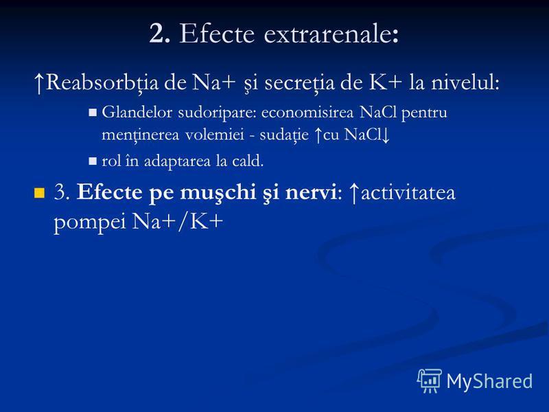 2. Efecte extrarenale: Reabsorbţia de Na+ şi secreţia de K+ la nivelul: Glandelor sudoripare: economisirea NaCl pentru menţinerea volemiei - sudaţie cu NaCl rol în adaptarea la cald. 3. Efecte pe muşchi şi nervi: activitatea pompei Na+/K+