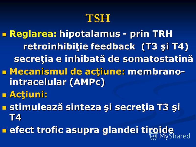 TSH Reglarea: hipotalamus - prin TRH Reglarea: hipotalamus - prin TRH retroinhibiţie feedback (T3 şi T4) retroinhibiţie feedback (T3 şi T4) secreţia e inhibată de somatostatină secreţia e inhibată de somatostatină Mecanismul de acţiune: membrano- int