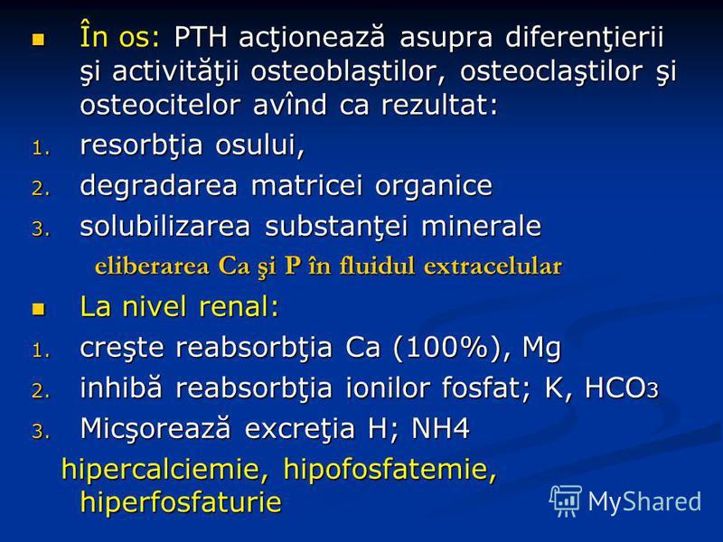 În os: PTH acţionează asupra diferenţierii şi activităţii osteoblaştilor, osteoclaştilor şi osteocitelor avînd ca rezultat: În os: PTH acţionează asupra diferenţierii şi activităţii osteoblaştilor, osteoclaştilor şi osteocitelor avînd ca rezultat: 1.