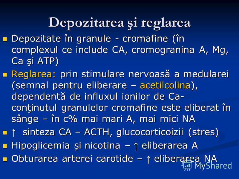 Depozitarea şi reglarea Depozitate în granule - cromafine (în complexul ce include CA, cromogranina A, Mg, Ca şi ATP) Depozitate în granule - cromafine (în complexul ce include CA, cromogranina A, Mg, Ca şi ATP) Reglarea: prin stimulare nervoasă a me