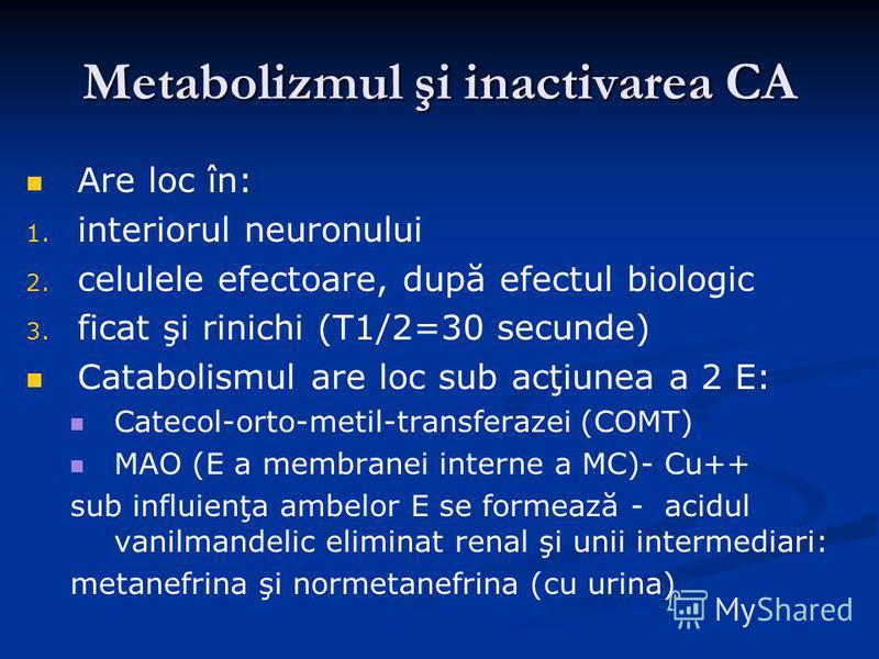 Metabolizmul şi inactivarea CA Are loc în: 1. 1. interiorul neuronului 2. 2. celulele efectoare, după efectul biologic 3. 3. ficat şi rinichi (T1/2=30 secunde) Catabolismul are loc sub acţiunea a 2 E: Catecol-orto-metil-transferazei (COMT) MAO (E a m