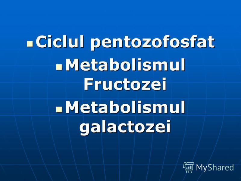Ciclul pentozofosfat Ciclul pentozofosfat Metabolismul Fructozei Metabolismul Fructozei Metabolismul galactozei Metabolismul galactozei