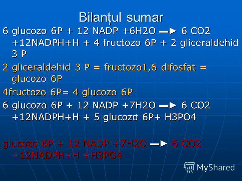 Bilanţul sumar 6 glucozo 6P + 12 NADP +6H2O 6 CO2 +12NADPH+H + 4 fructozo 6P + 2 gliceraldehid 3 P 2 gliceraldehid 3 P = fructozo1,6 difosfat = glucozo 6P 4fructozo 6P= 4 glucozo 6P 6 glucozo 6P + 12 NADP +7H2O 6 CO2 +12NADPH+H + 5 glucozo 6P+ H3PO4